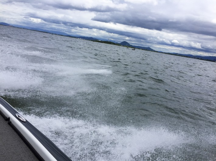 alphainternational bassboat